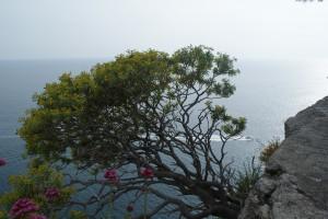 Italienische Küste